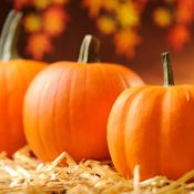 Decorate your yard too with pumpkins, corn stalks, straw bales, scarecrows, and a fall flag to blow in the breeze.