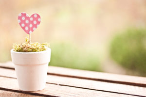 Pink Paper Heart in Planter