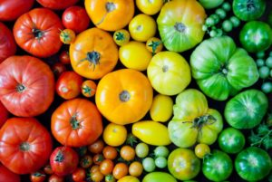 Tomatoes are a great edible plant to grow in your garden.