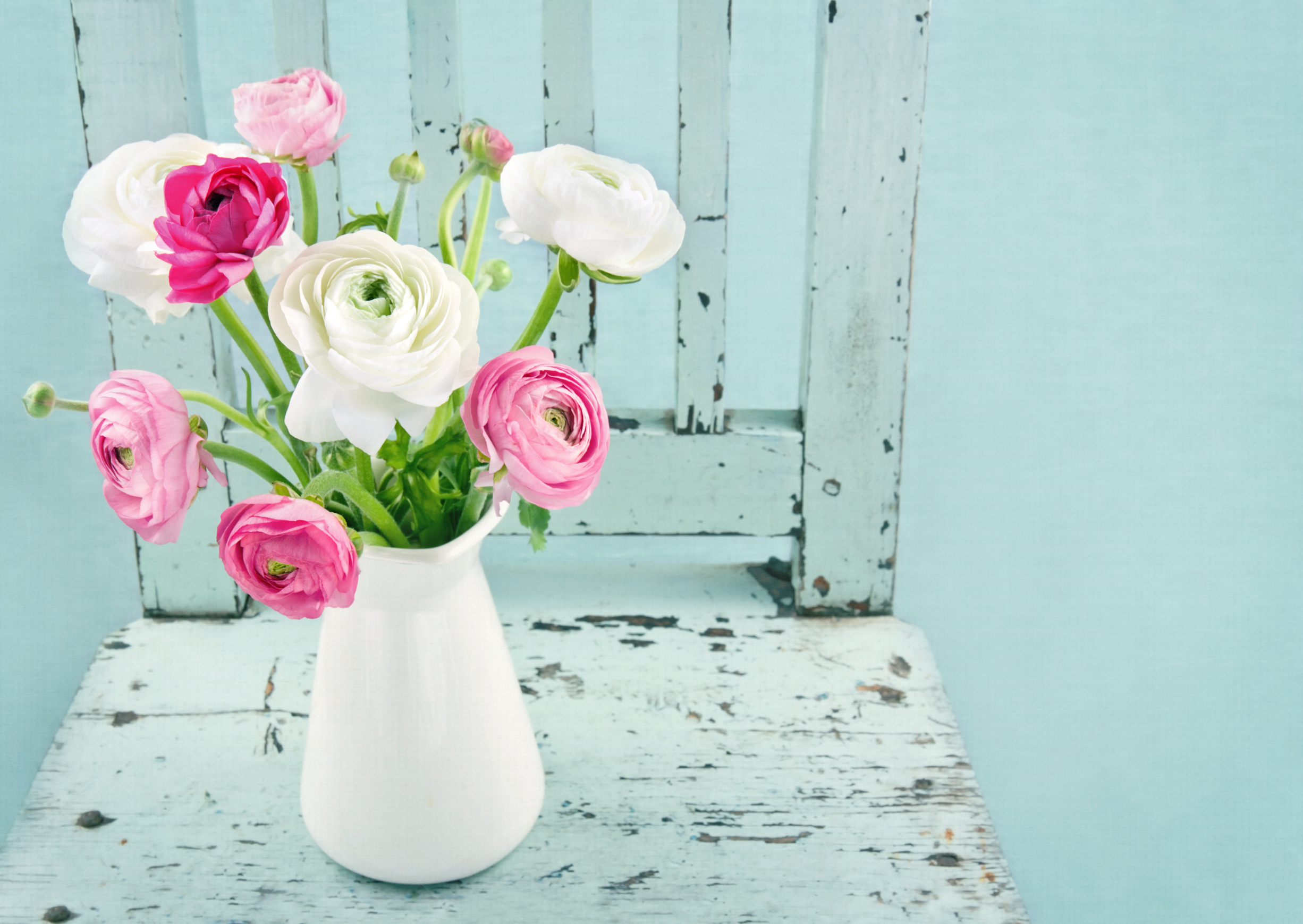 How to make flowers last longer in a vase wagners greenhouses how to make flowers last longer in a vase reviewsmspy