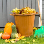 Fall Clean Up- Don't Put it off this Year