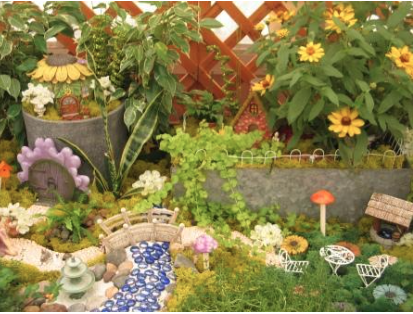 Come in to our Garden Centers to make your own fairy garden.