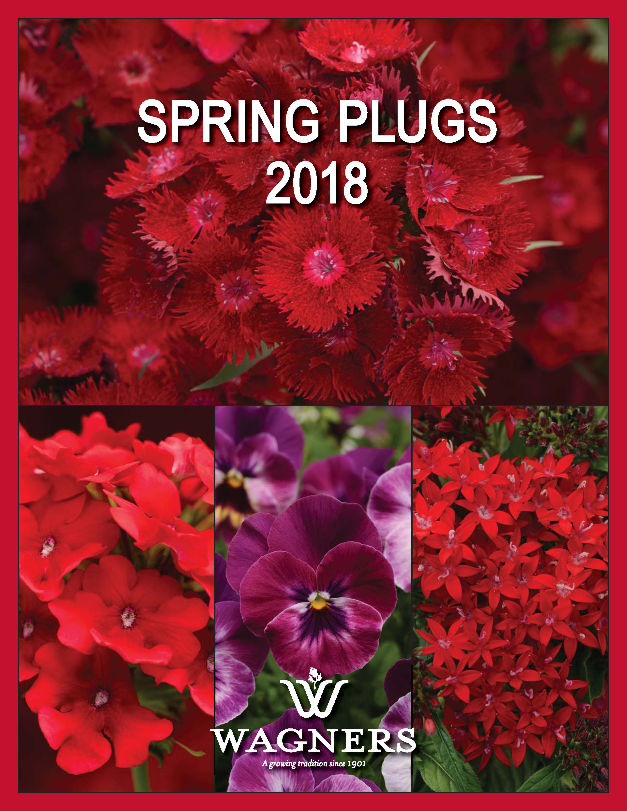 Spring Plugs 2018 Cover Wagners Greenhouse