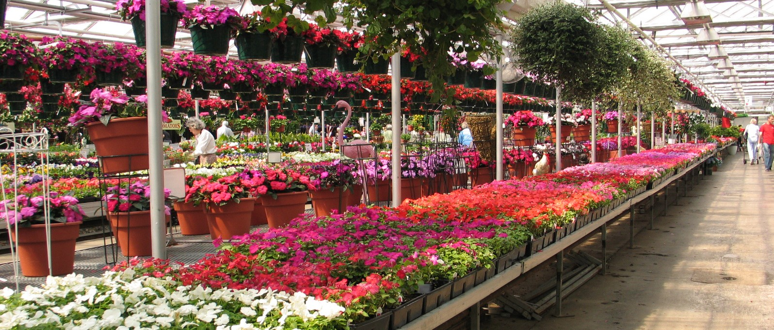 Retailers Wagners Greenhouse