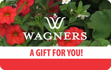 wagners-giftcards