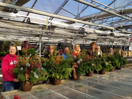 Mixed Evergreen Containers Workshop Wagners Greenhouse